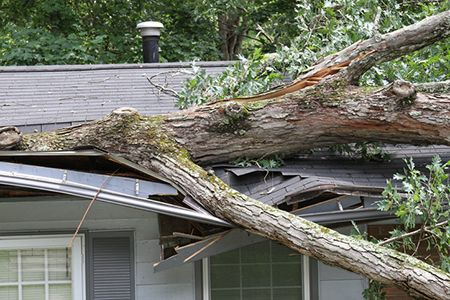 Wondering What Homeowners Insurance Covers For Your Roof